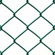 Green Wire Fence isolated on White Background, Vertical pattern — Stock Photo #34238409