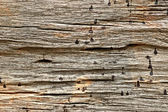 Old Wood Texture Background, — Stockfoto