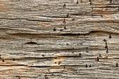 旧木材纹理背景, — 图库照片