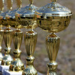 Prize cups — Stock Photo