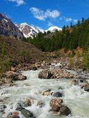 River heads Aktru — Stock Photo