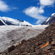 Glaciers Aktru — Stock Photo