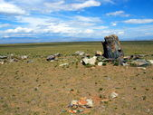 Cult stones in steppe — Stock Photo