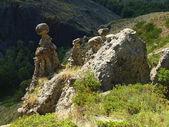 Stone mushrooms — Stock Photo