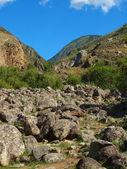 La rivière pierre — Photo