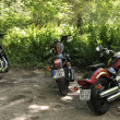 Постер, плакат: Motorcycles parked