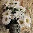 ストック写真: Bouquet of white daisies