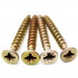 Stock Photo: Gold screws