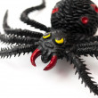 Black spider — Stock Photo
