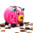 Stock Photo: Piggy bank