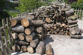 Log pile — Stock fotografie