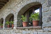 旧的 windows — 图库照片
