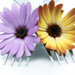 Fork with flowers  — Stock Photo