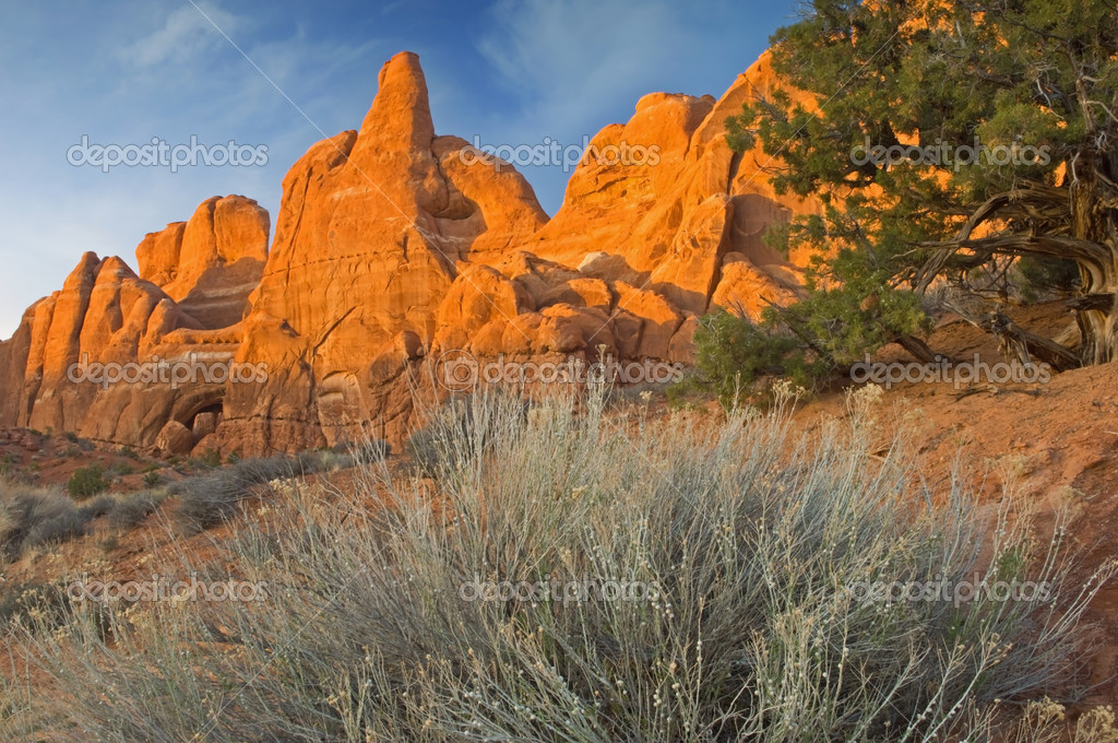 Rocky desert landscape at sunset Arches National Park, Utah, USA  Stock Photo #12173340