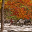 Autumn, Pigeon River - Stock Photo