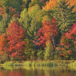 Autumn, Doe Lake — Stock Photo
