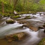 Big Creek — Stock Photo