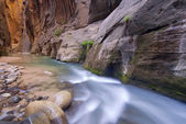 Virgin River Narrows — Stock Photo