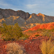 Lake Mead National Recreation Area — Stock Photo #12530805