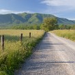 Sparks Lane, Great Smoky Mountains National Park - Stock Photo
