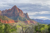 The Watchman, Zion National Park — Stock Photo