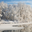 Winter Shoreline — Stock Photo