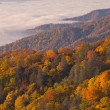 Autumn, Great Smoky Mountains — 图库照片