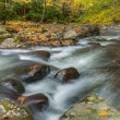 Stock Photo: Big Creek, Great Smoky Mountains