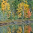 Autumn Shore Irwin Lake - Stock Photo