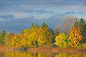 Autumn Shoreline Whitford Lake — Stock Photo