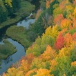 Stock Photo: Autumn Forest and Stream