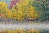 Autunno lago hall nella nebbia — Foto Stock