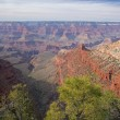 South Rim Grand Canyon — Stock Photo