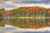 Autumn Council Lake — Stock Photo