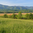 Spring, Cades Cove, Great Smoky Mountains National Park — Stock Photo #47141019