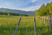 Hyatt Lane Cades Cove — Stock Photo