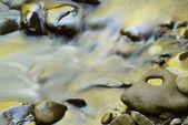 Rápidos del río pequeño dorados — Foto de Stock