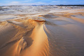 Winter, Silver Lake Sand Dunes — Stock Photo
