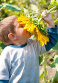 Child with sunflower — Stock Photo