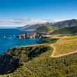 Big Sur Coastline — Stock Photo #12171038