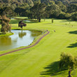 Golf Course Overview — Stock fotografie