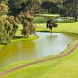 Golf Course and Pond — Stock Photo