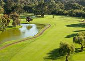 Pole golfowe przegląd — Zdjęcie stockowe