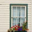 Foto Stock: Window Box with Flowers