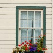 Window Box with Flowers — Stock Photo