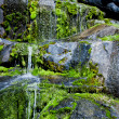 Foto Stock: Water Trickling over Mossy Rocks