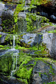 Water Trickling over Mossy Rocks — Стоковое фото