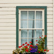 Stockfoto: Window Box with Flowers