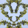 Heart shaped design with plum tree branches. — Stock Photo