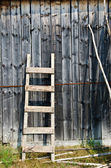 Old wood ladder leaning over a grey wooden wall. — Photo